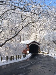 Covered bridge in, Lancaster County Central Park. Lancaster, Pennsylvania  Such a beautiful snow!! I took this pic with my iPhone on 2/10/16.