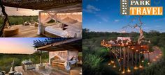 Private Games, Game Reserve, Savannah Chat, Africa, The Incredibles, Tours, Park, Places, Travel