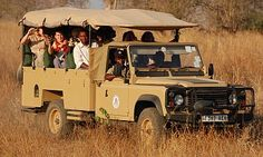 Safari Golf Carts, Safari, Vehicles, Golf Cart Bodies, Vehicle, Tools