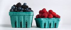 Storing Fresh Berries ~ Seasonal, jewel-toned berries' small stature belies a mighty flavor, and their delicate flesh is as ephemeral as summer itself. Which means you've got to treat 'em right if you want the best they have to offer. #Storing_Berries #Climacteric