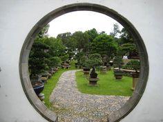 The Bonsai Garden Bonsai Plants, Bonsai Garden, Singapore Garden, Short Plants, Organic Gardening, Gardening Blogs, Circle Shape, Wabi Sabi, Stepping Stones