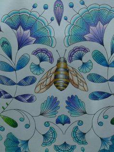 Millie Marotta Animal Kingdom Coloring TipsAdult ColoringColoring BooksJoanna