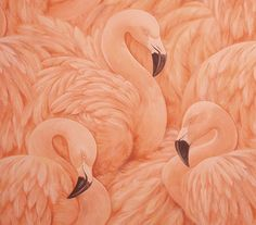 flamingo wallpaper. YES.