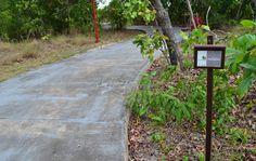 As trilhas também são muito usadas para prática de caminhadas e cooper. Parque Ecológico Bosque dos Papagaios. R. Moisés de Souza Cruz - Paraviana, Boa Vista - RR, 69307-260.
