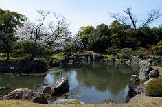Explore Tamayura's photos on Flickr. Tamayura has uploaded 7415 photos to Flickr.