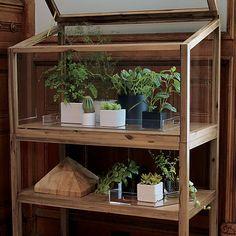 atrium display cabinet | CB2