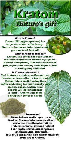 Benefits of Kratom
