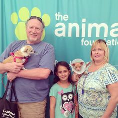 Neci (right) was the last dog to receive any interest in our adoption drawing, but he was the #1 pick for Cathy and her family! Today, this guy is going home and getting renamed Romo!