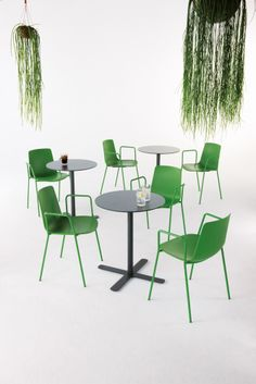 Lottus tables and chairs, by ENEA.