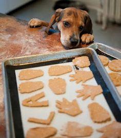 Peanut Butter & Pumpkin Dog Treats (substitute the wheat flour for oat flour, rice flour, or potato flour for a wheat-free option)
