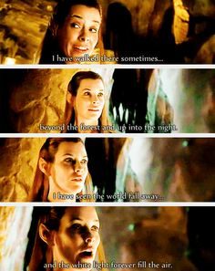 The writers really captured Tolkien's essence in this speech by Tauriel. Even when she wasn't in the book, I truly liked her character!