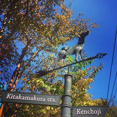 「#kitakamakura #kenchoji #sunnyday #happyweekend #happy #love #lifeisswell」