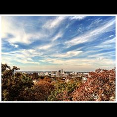 View of Birmingham in the Fall.