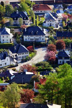 Bergen Photographer L. A. Pedersen