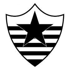 Botafogo Esporte Clube (Teresina (PI), Brasil)