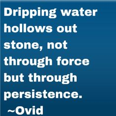 Dripping water hollows out stone, not through force but through persistence. ~Ovid