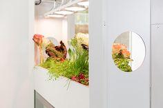 Geringe Luftfeuchtigkeit trocknet die Schleimhäute aus. Krankheitsbedingte Ausfälle von Mitarbeitern steigen. Vitalion wirkt dem entgegen. Es aktiviert die Raumdynamik durch Luftbefeuchtung und Filterung von Schadstoffen. Das System fördert Entspannung und Konzentration zugleich, steigert Kreativität, Motivation und letztlich die Produktivität. Aquaponics, Environment, Relax, Creative, Architects, Benefit, Plants, Community, Display