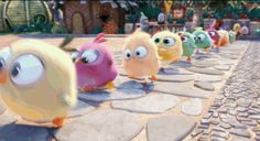 Angry Birds cute birds road anger