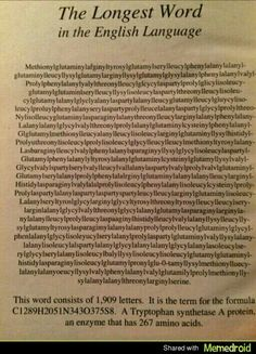 The longest word in the english language