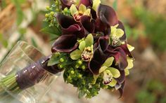 Purple Calla and Green Cymbids-- very modern combo