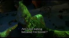 Grinch Quotes Extraordinary Jim Carrey Grinch Quotes  Grinch  Movie Quotes  Movies Quotes