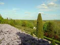 Chateau Rochecotte, Loire Valley, This was the view of the wisteria walk and valley outside our suite's windows! The fragrance was amazing!