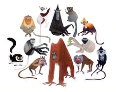 Primates, by Brendan Wenzel | 20x200