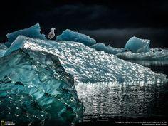 Icescape #ice #photo #art @chadlittleart