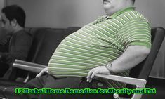 15 Herbal Home Remedies for Obesity and Fat - The Health Advise