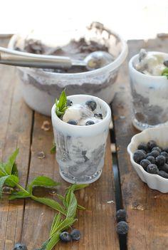 Blueberry Coconut Ice Cream with Dark Chocolate bits - BoulderLocavore