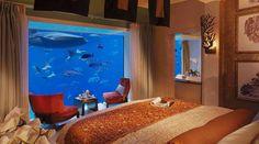 Underwater Suites at Atlantis,The Palm in Dubai. The Palm, Dubai www. Dubai Hotel, Hotel Subaquático, Hotel Suites, Dubai Uae, Dubai Trip, Dubai Travel, Hotel Deals, Wall Aquarium, Home Aquarium