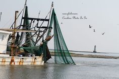 Art Photography Shrimp boat at work with sea birds by nancyhehmann, $25.00