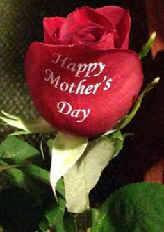 Happy Mother's Day !!!