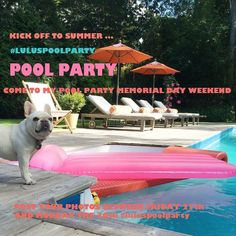 Don't forget to join in on all the fun sun and pool party shenanigans while raising money for animals in need!  #Repost @lulunasty  Help me kick off Summer this weekend with Lulu's pool Party !!  #luluspoolparty  For every post tagged #luluspoolparty this Friday the 27-Monday the 30th I will donate $1 a post to @chicagofrenchbulldogrescue and to @roadogs up to $350 each !! So let's get your swimwear on and let's party! Show me how you are celebrating this weekend ! let's raise some money for…