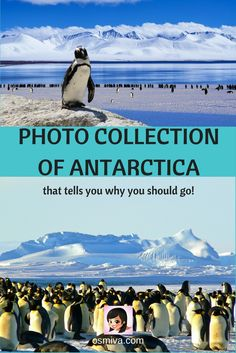 Among the continents in the world, Antarctica by far is the most interesting travel destination. With its unique temperature all-year round and breathtakin