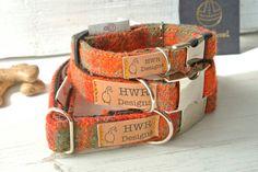Harris Tweed Dog Collars,  Orange  Tweed Dog collar,Orange and Sage green Tweed Dog Collar. Designer dog collar by HWRDesigns on Etsy https://www.etsy.com/listing/275325302/harris-tweed-dog-collars-orange-tweed