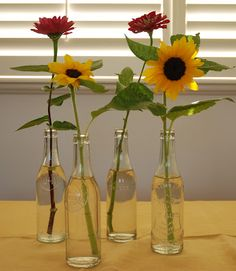 another way to recycle soda bottles