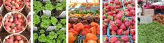 Eat seasonably calendar for the NYC area.  What vegetables are harvested what month, and what can be had from storage.