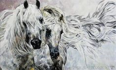 "WHITE ARABIAN HORSES / WEISSE ARABISCHE PFERDE  Jana Fox & Oleg Dyck [J&O Art Studio Cologne]  45.3"" x 27.5""   115 x 70 cm Fantastic manes!"