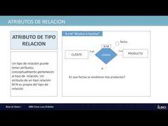 Modelo Entidad relación - conceptos básicos para la creación de los modelo entidad relación. Base, Model, Concept, The Creation