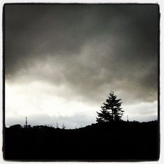 Grey skies, Corstorphine Hill, Edinburgh, Scotland.