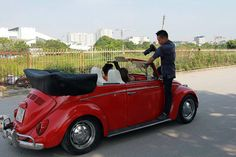 Đoàn Mạnh, from Ninh Bình, Hà Nôi, VietNam. His 1967 Red VW Beetle Convertible. He can be joined on Facebook at: https://www.facebook.com/beetle1958