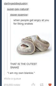 Snakes scare me but this is kinda cute