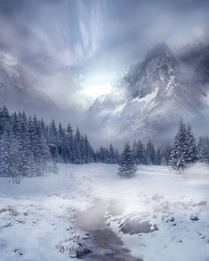 """Winter Scene Stock by *wyldraven """"This is unrestricted stock.  May be used in prints, on other websites and commercial use too.  But please do not use my stock to create stock.  Remember to credit me and give me a link to your work.""""  1984x2480"""
