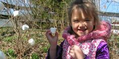 CSA, Produce Farm, U-Pick at Great Country Farms - Family Events, Weddings, Birthdays & Field Trips in Loudoun County, VA 20135