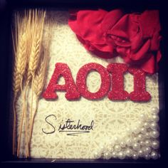 Gift Ideas | Alpha Omicron Pi | AOII | LOVE this shadow box... cutest gift ever.