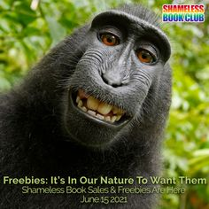 Freebies: It's In Our Nature To Want Them 📸 Shameless Book Sales & Freebies are here!