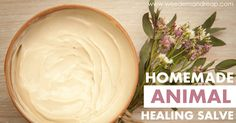 Homemade Animal Healing Salve: Yields 1 cup  Adapted from the Paleo Mama's All Purpose Healing Salve  Ingredients:  1/2 cup of Coconut Oil –...