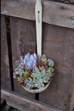 A Spoonful of Succulents! Great idea for my grandmother's well dipper from farm. love this for the backyard!