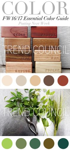 TREND COUNCIL F/W 2016 ESSENTIAL COLOR GUIDE